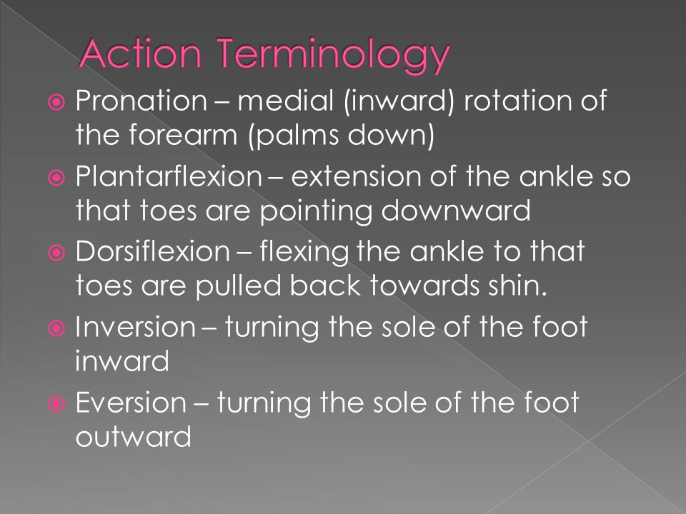  Pronation – medial (inward) rotation of the forearm (palms down)  Plantarflexion – extension of the ankle so that toes are pointing downward  Dorsiflexion – flexing the ankle to that toes are pulled back towards shin.