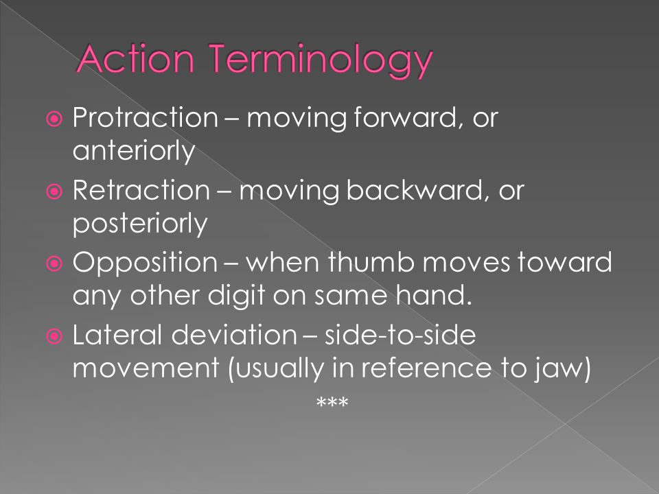  Protraction – moving forward, or anteriorly  Retraction – moving backward, or posteriorly  Opposition – when thumb moves toward any other digit on