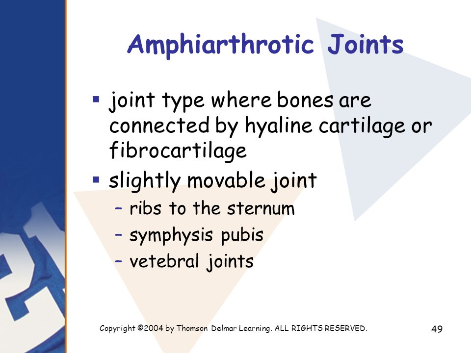 Copyright ©2004 by Thomson Delmar Learning. ALL RIGHTS RESERVED. 49 Amphiarthrotic Joints  joint type where bones are connected by hyaline cartilage