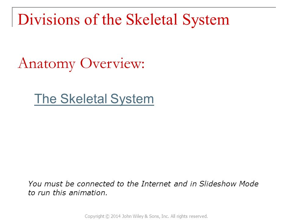 The Skeletal System Divisions of the Skeletal System Copyright © 2014 John Wiley & Sons, Inc. All rights reserved. Anatomy Overview: You must be conne