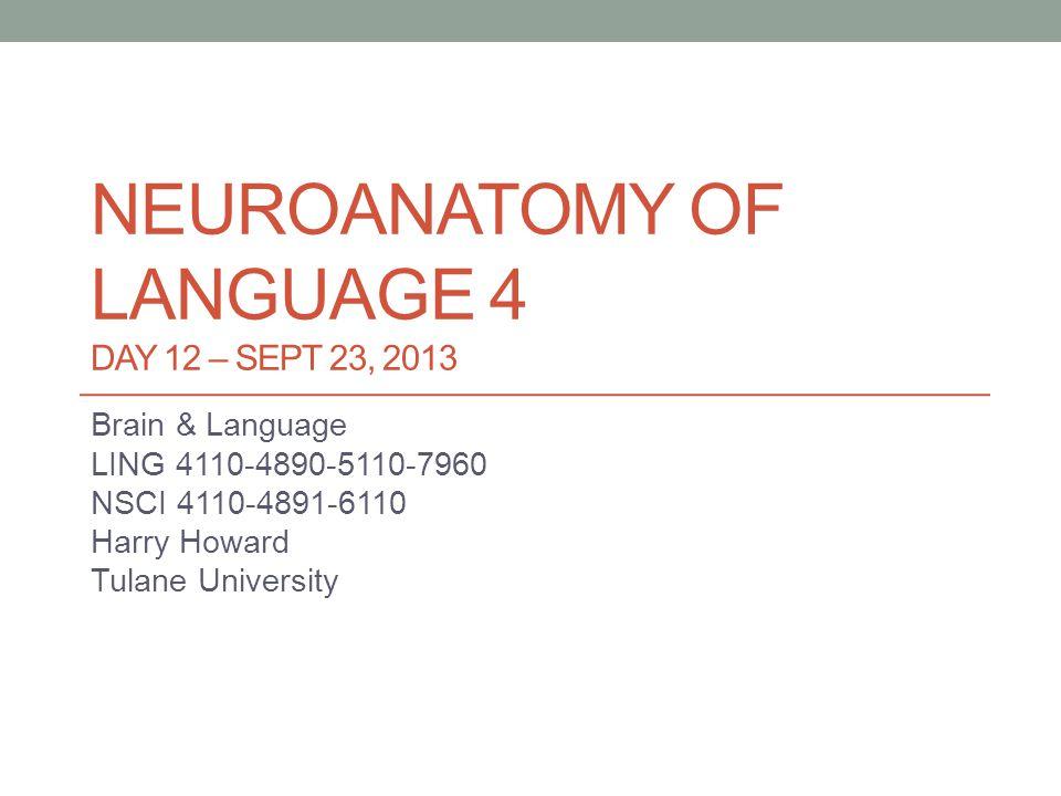 NEUROANATOMY OF LANGUAGE 4 DAY 12 – SEPT 23, 2013 Brain & Language LING 4110-4890-5110-7960 NSCI 4110-4891-6110 Harry Howard Tulane University