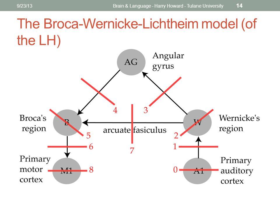 9/23/13Brain & Language - Harry Howard - Tulane University 14 The Broca-Wernicke-Lichtheim model (of the LH)