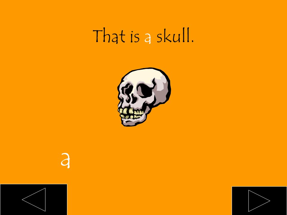 That is ___ skull. an a blank