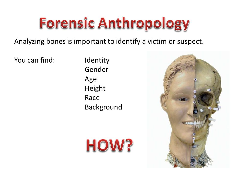 Analyzing bones is important to identify a victim or suspect. You can find: Identity Gender Age Height Race Background