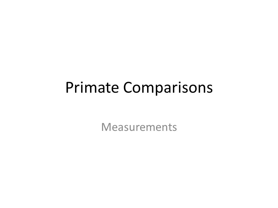 Primate Comparisons Measurements