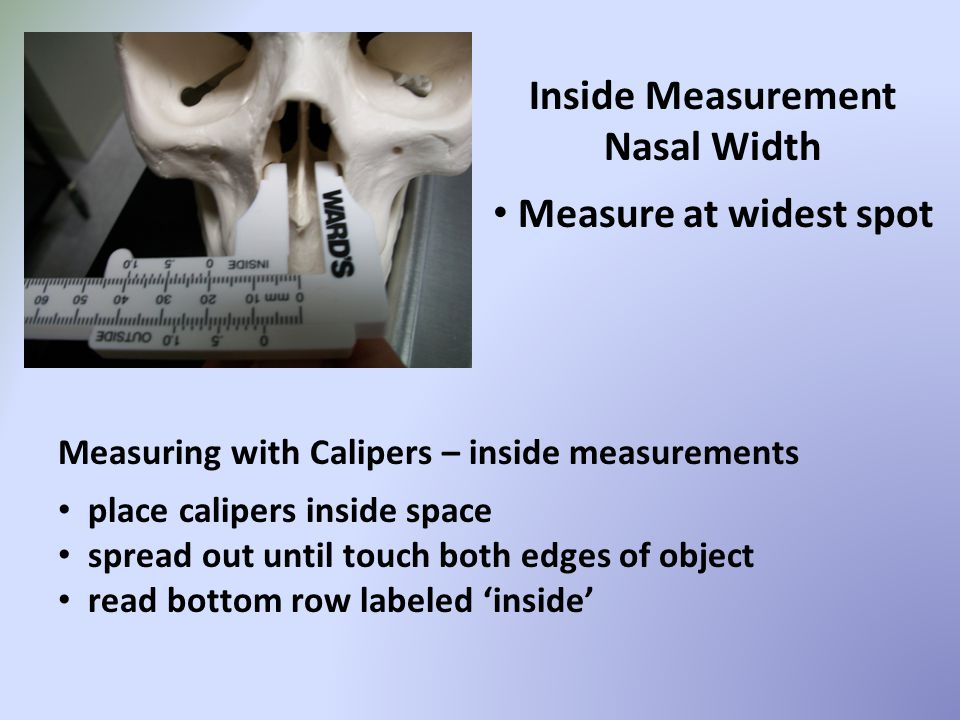 Inside Measurement Nasal Width Measure at widest spot Measuring with Calipers – inside measurements place calipers inside space spread out until touch