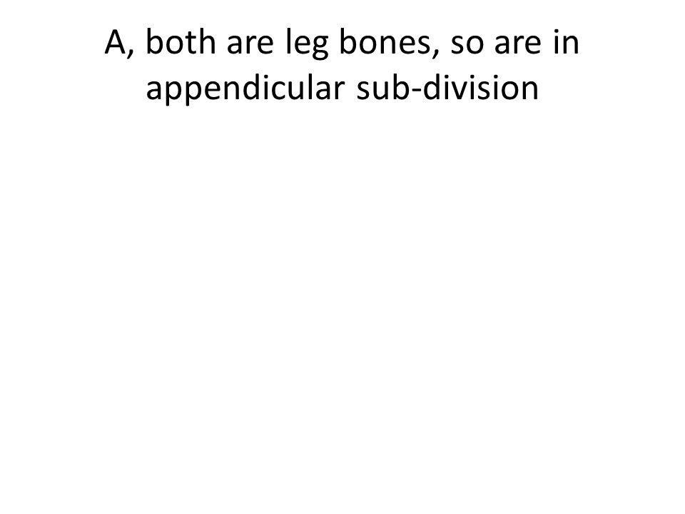 A, both are leg bones, so are in appendicular sub-division