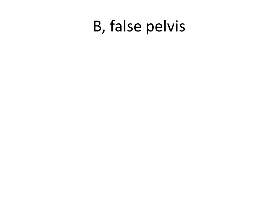 B, false pelvis