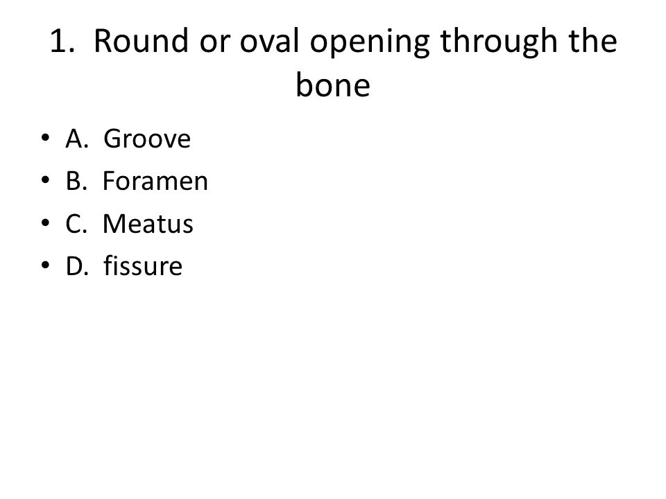 1. Round or oval opening through the bone A. Groove B. Foramen C. Meatus D. fissure