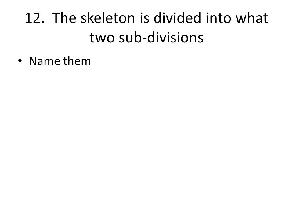 12. The skeleton is divided into what two sub-divisions Name them
