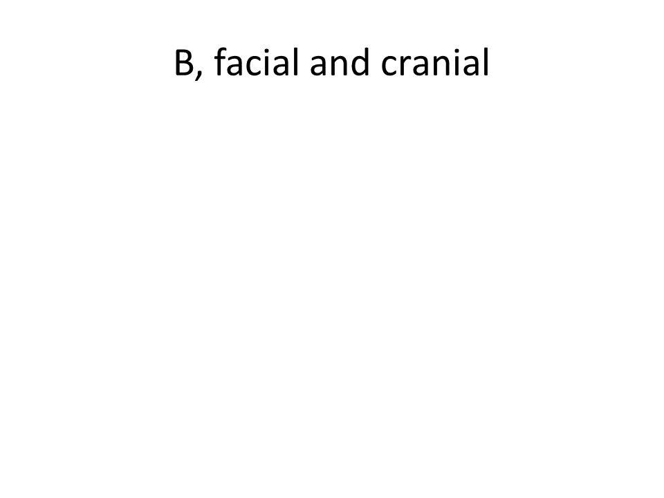 B, facial and cranial