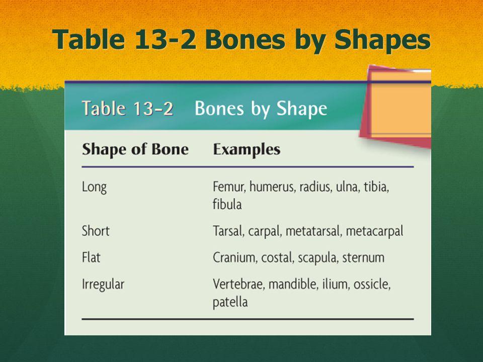Facial Bones That's it! No more facial bones! 198 bones - 14 bones = 184 bones to go…