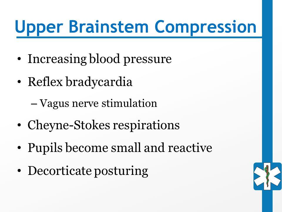 Upper Brainstem Compression Increasing blood pressure Reflex bradycardia – Vagus nerve stimulation Cheyne-Stokes respirations Pupils become small and
