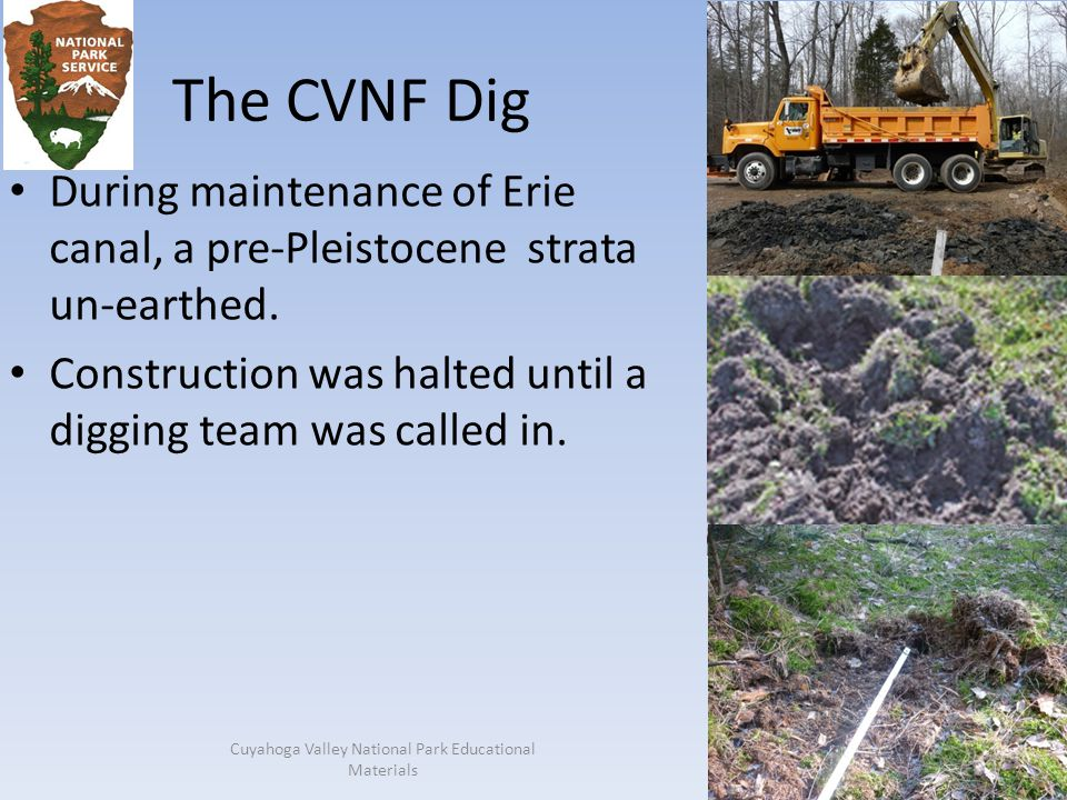 The CVNF Dig During maintenance of Erie canal, a pre-Pleistocene strata un-earthed.