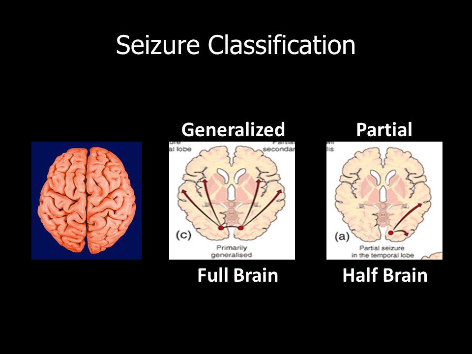 Generalized Partial Seizure Classification Full Brain Half Brain