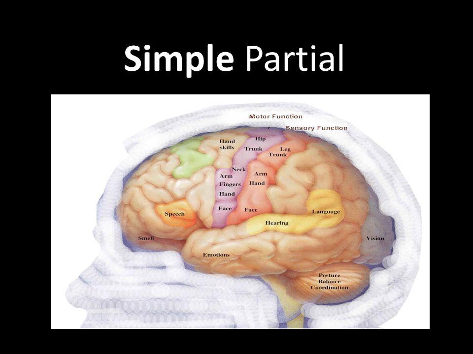 Simple Partial