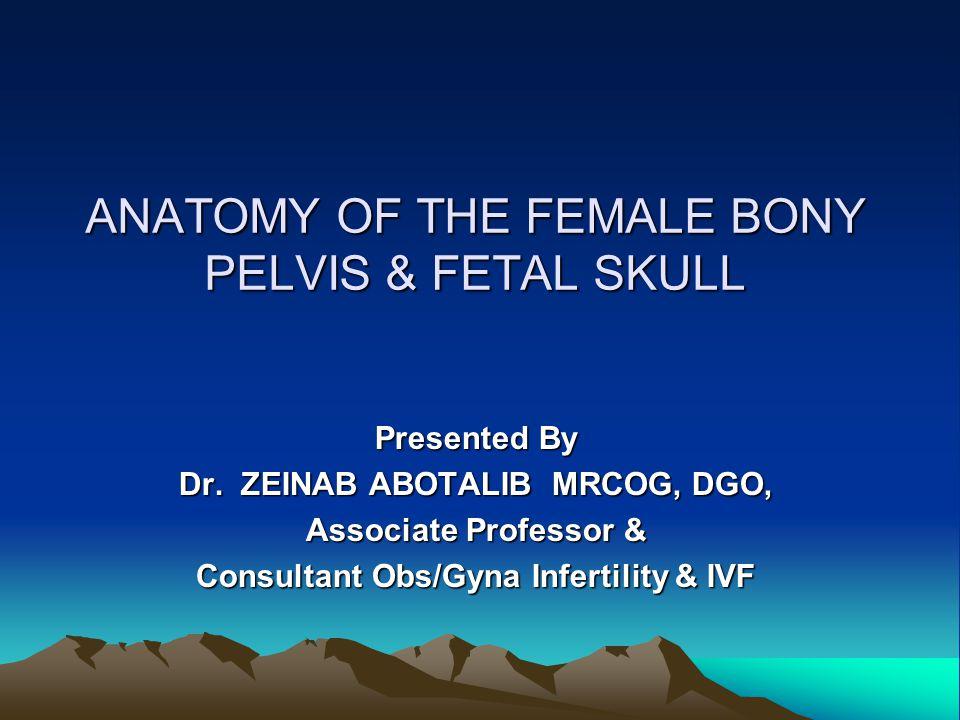 PELVIC WALLS The inner aspect of the bony pelvis is covered with muscles  Above the brim --- iliacus & psoas  Sidewalls ---- obturator internus & its fascia  Post wall ---- pyriformis  Pelvic floor ---- lavator ani & coccygeus