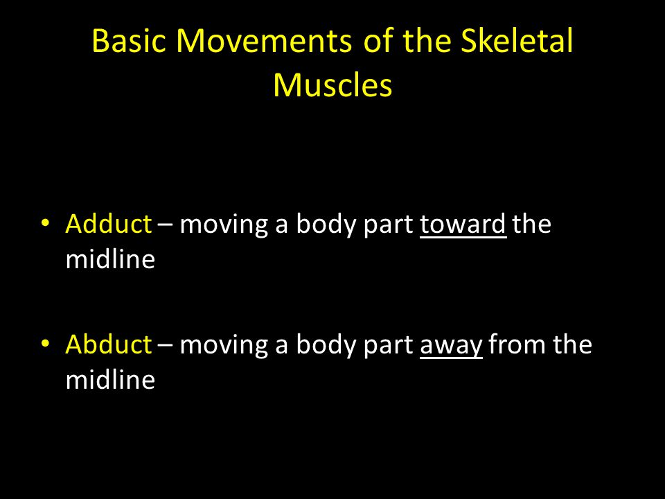 Basic Movements of the Skeletal Muscles Adduct – moving a body part toward the midline Abduct – moving a body part away from the midline