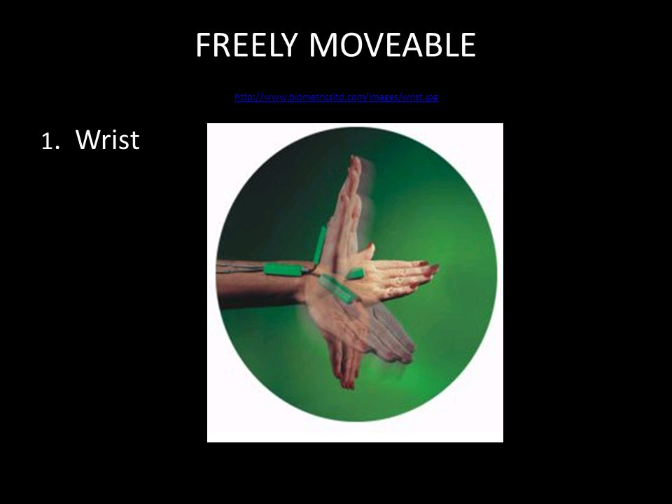 FREELY MOVEABLE http://www.biometricsltd.com/images/wrist.jpg http://www.biometricsltd.com/images/wrist.jpg 1.