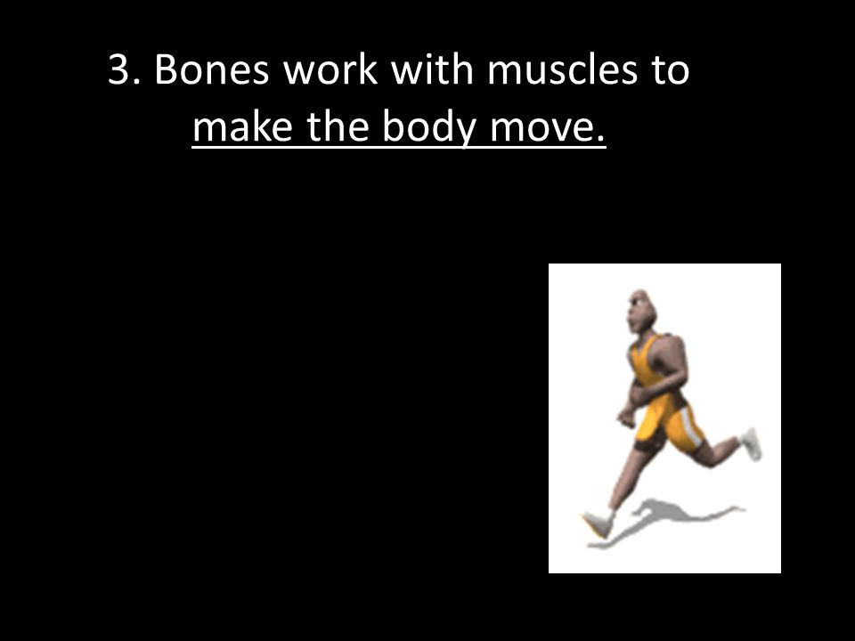 3. Bones work with muscles to make the body move.