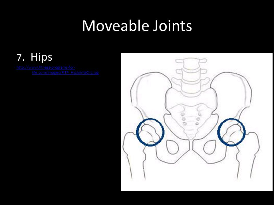 Moveable Joints 7. Hips http://www.fitness-programs-for- life.com/images/FITP_HipJointsCirc.jpg