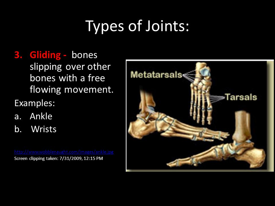 Types of Joints: 3.Gliding - bones slipping over other bones with a free flowing movement. Examples: a.Ankle b. Wrists http://www.wobblenaught.com/ima