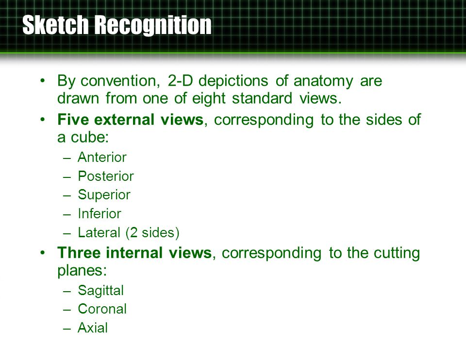 Evaluation: Medical Student Accuracy