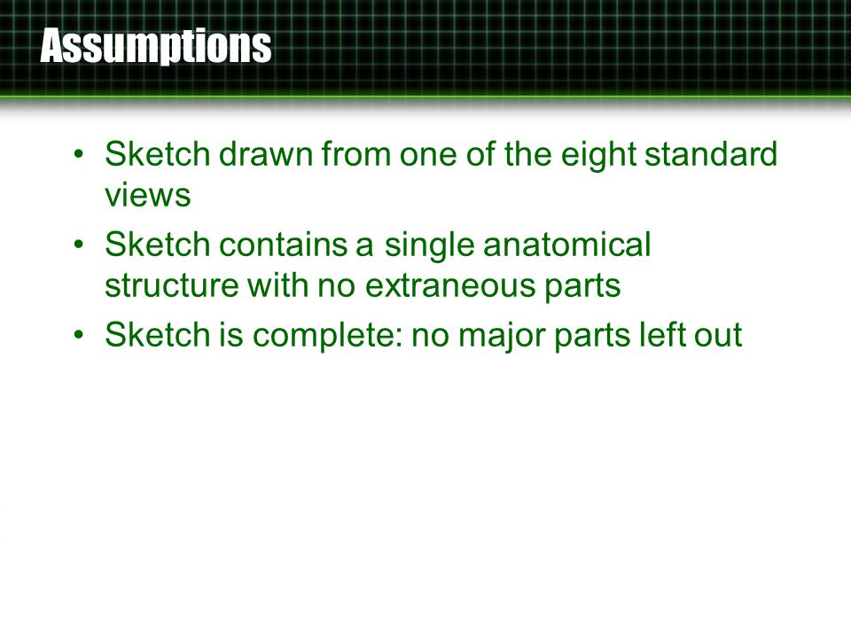 Assumptions Sketch drawn from one of the eight standard views Sketch contains a single anatomical structure with no extraneous parts Sketch is complete: no major parts left out