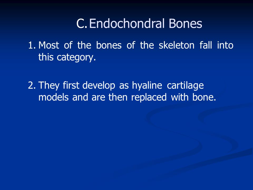 1.Most of the bones of the skeleton fall into this category.