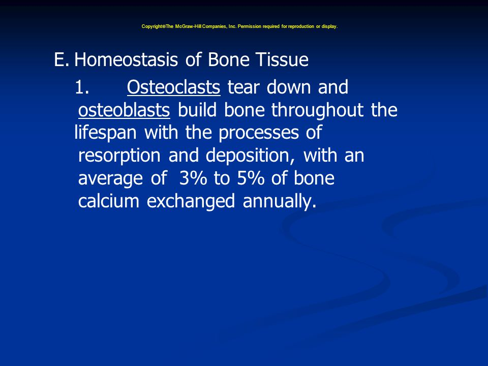 E.Homeostasis of Bone Tissue 1.Osteoclasts tear down and osteoblasts build bone throughout the lifespan with the processes of resorption and deposition, with an average of 3% to 5% of bone calcium exchanged annually.
