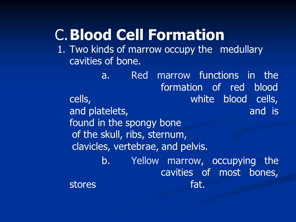 1.Two kinds of marrow occupy the medullary cavities of bone.