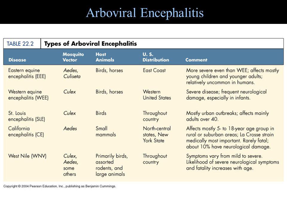 Arboviral Encephalitis