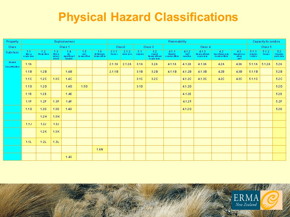Physical Hazard Classifications