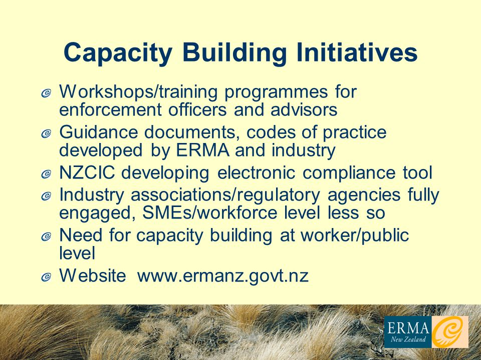 Capacity Building Initiatives Workshops/training programmes for enforcement officers and advisors Guidance documents, codes of practice developed by ERMA and industry NZCIC developing electronic compliance tool Industry associations/regulatory agencies fully engaged, SMEs/workforce level less so Need for capacity building at worker/public level Website www.ermanz.govt.nz