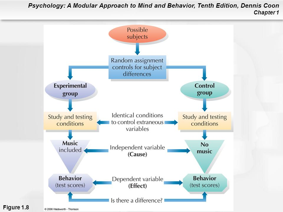 Psychology: A Modular Approach to Mind and Behavior, Tenth Edition, Dennis Coon Chapter 1 Figure 1.8
