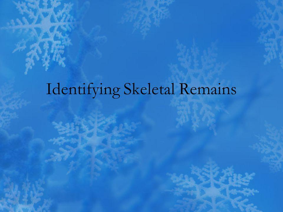 Identifying Skeletal Remains