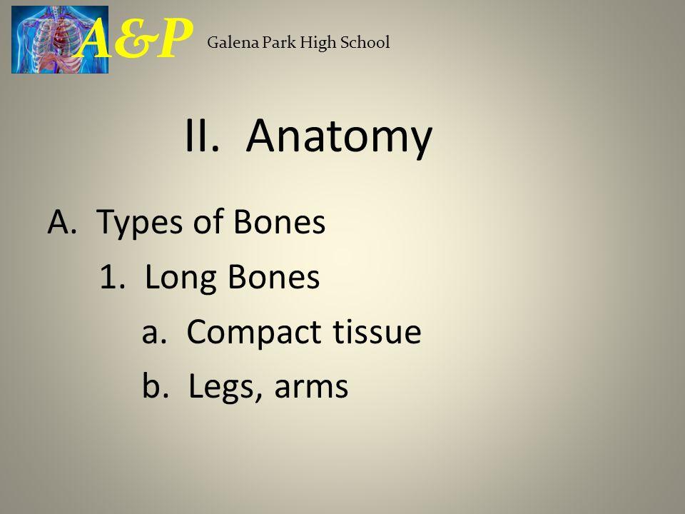 A. Types of Bones 1. Long Bones a. Compact tissue b. Legs, arms Galena Park High School A&P II. Anatomy