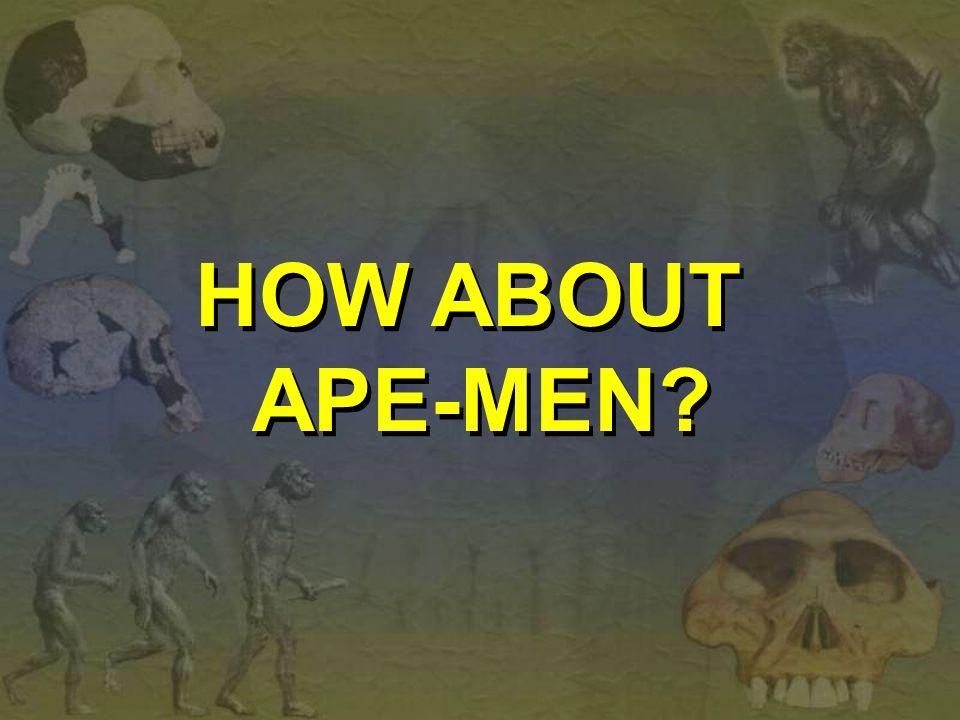 HOW ABOUT APE-MEN? HOW ABOUT APE-MEN?