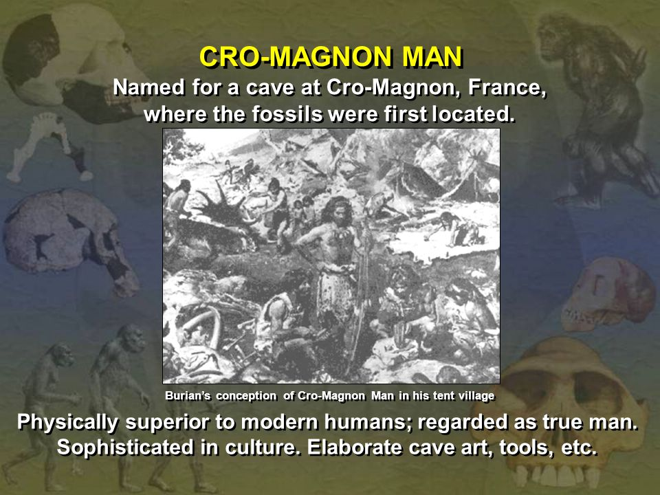 Named for a cave at Cro-Magnon, France, where the fossils were first located. Named for a cave at Cro-Magnon, France, where the fossils were first loc