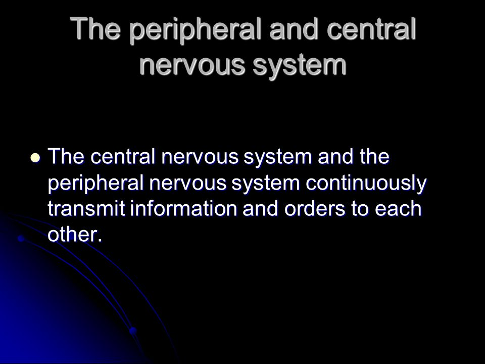 The peripheral and central nervous system The central nervous system and the peripheral nervous system continuously transmit information and orders to