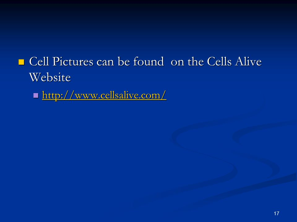 Cell Pictures can be found on the Cells Alive Website Cell Pictures can be found on the Cells Alive Website http://www.cellsalive.com/ http://www.cell