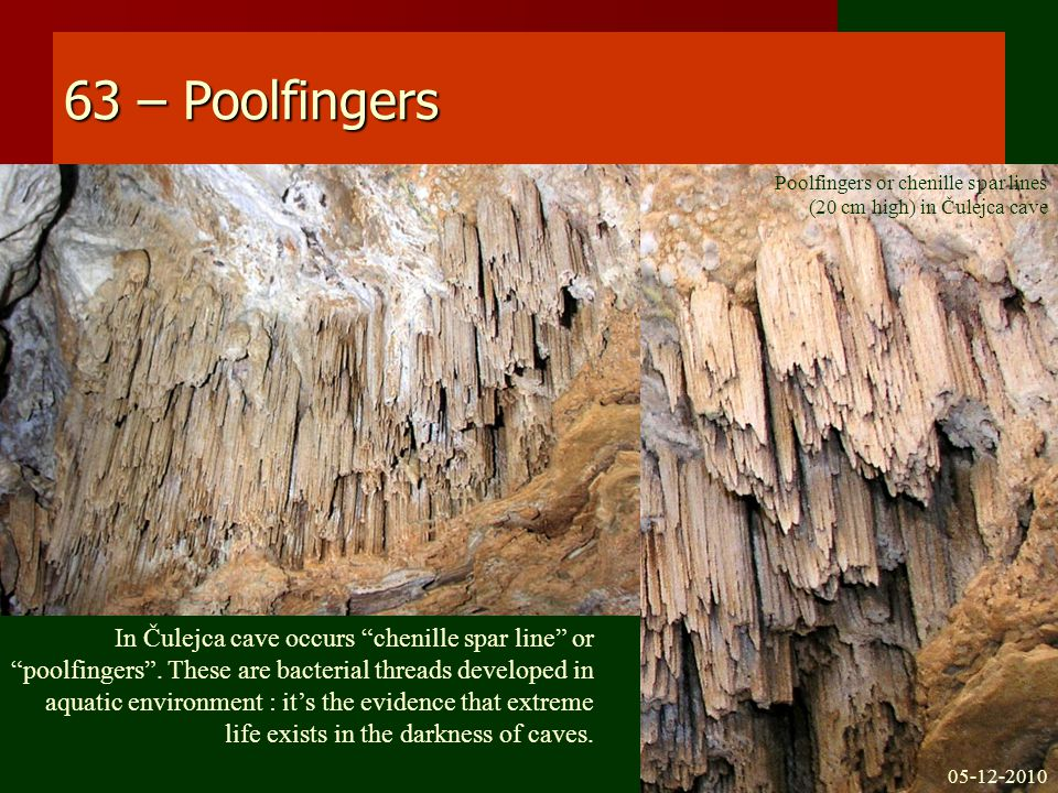 63 – Poolfingers In Čulejca cave occurs chenille spar line or poolfingers .