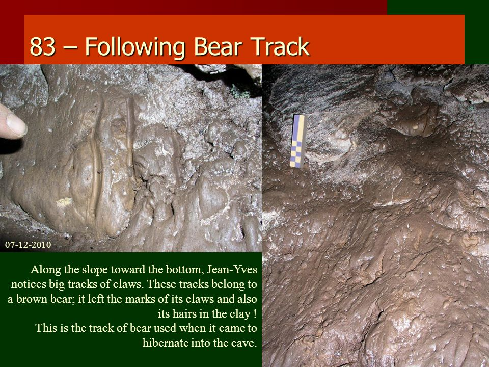83 – Following Bear Track Along the slope toward the bottom, Jean-Yves notices big tracks of claws.