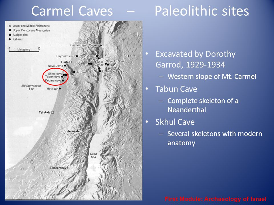 Carmel Caves – Paleolithic sites Excavated by Dorothy Garrod, 1929-1934 – Western slope of Mt. Carmel Tabun Cave – Complete skeleton of a Neanderthal