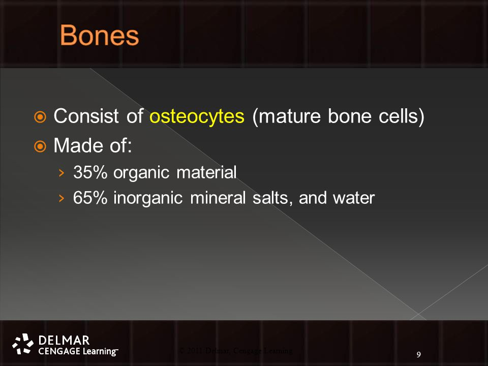 © 2010 Delmar, Cengage Learning 9 © 2011 Delmar, Cengage Learning  Consist of osteocytes (mature bone cells)  Made of: › 35% organic material › 65% inorganic mineral salts, and water 9