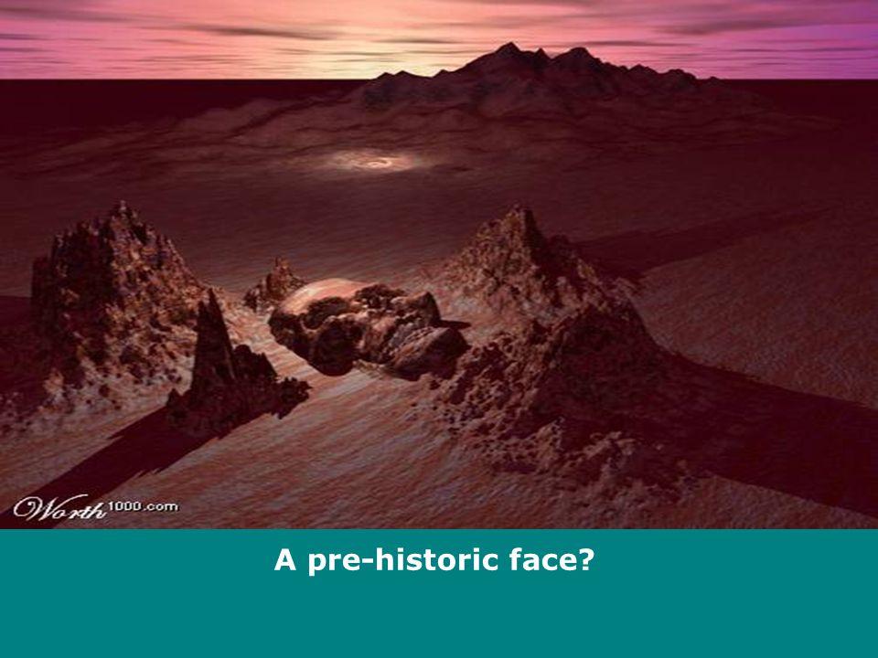 A pre-historic face?