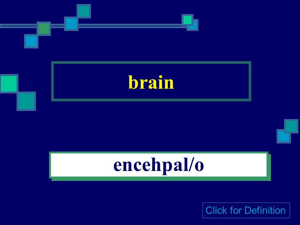 skull crain/o Click for Definition