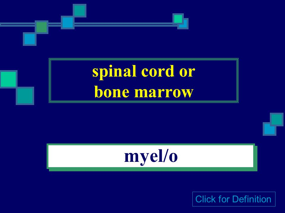 soft / soft condition malac/o or -malacia Click for Definition