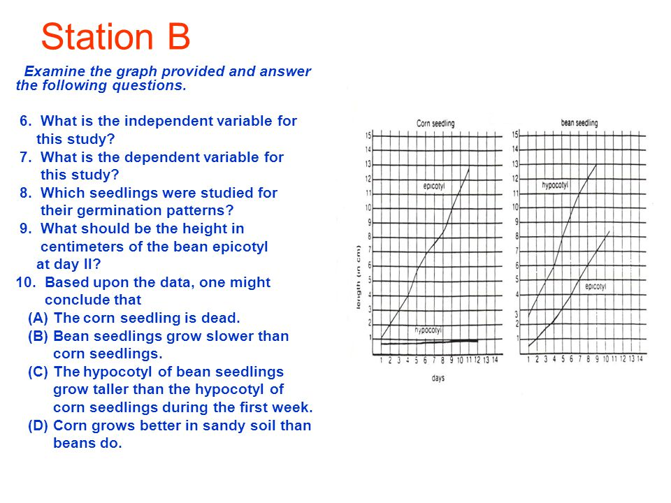Station B Examine the graph provided and answer the following questions. 6. What is the independent variable for this study? 7. What is the dependent
