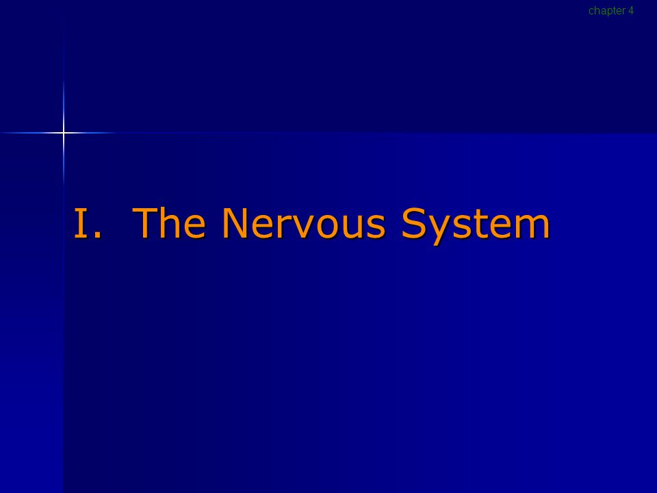 I. The Nervous System chapter 4
